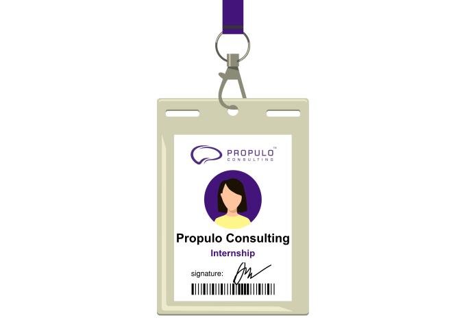 Internship at Propulo Consulting